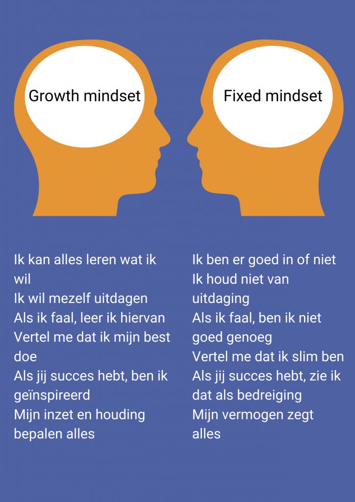 fixed growth mindset ontwikkeling